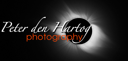 Peter den Hartog Photography