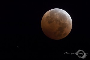 Total lunar eclipse of Oct 8, 2014. Uranus is only 0.5 degrees separated from the moon.