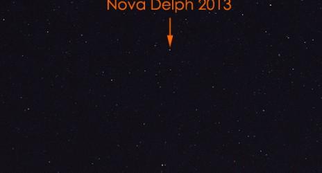 Nova Delphinus 2013